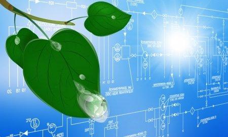 leaf on blueprint.jpg